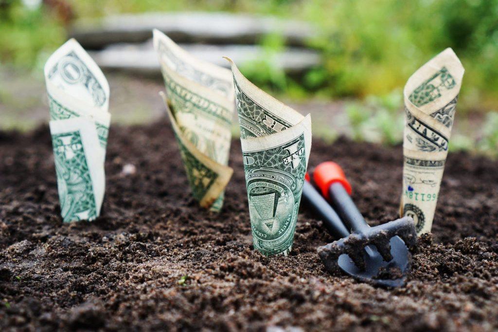 money is an idea 1