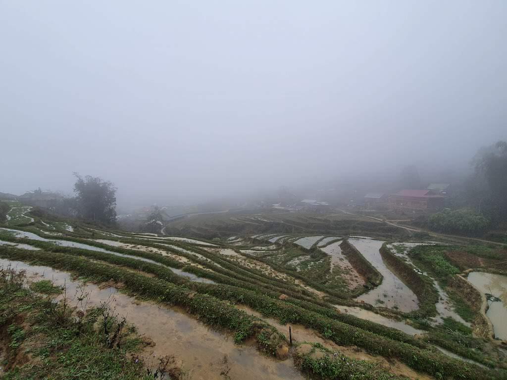 sa pa hiking fields first day fog 2