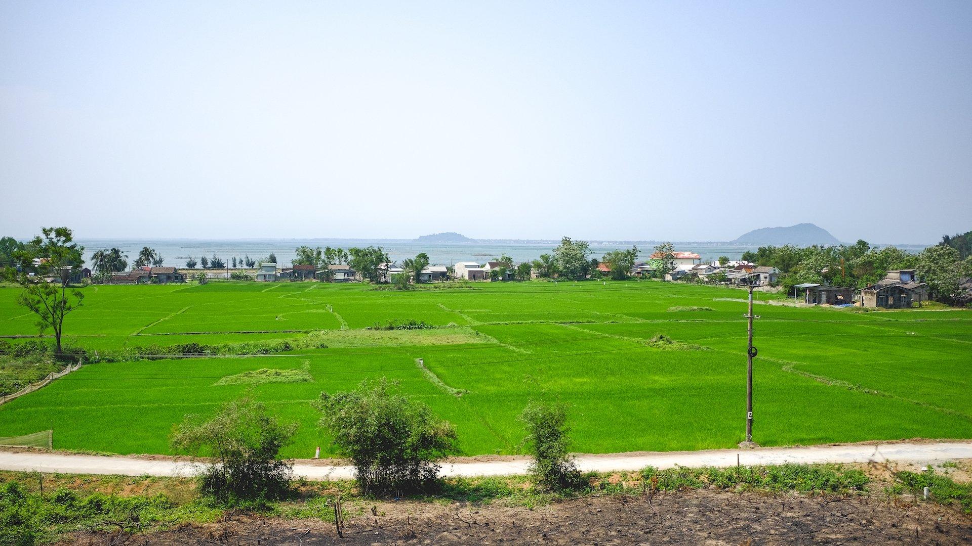 Da Nang to Hue Landscape
